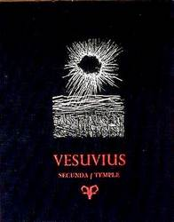 Vesuvious Book Cover an original silkscreen framed print by Arthur Secunda
